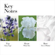 Key Notes: Top Clary Sage, Heart White Iris, Base Trio of Musks