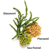 Superstart Booster Key Ingredients: Glasswort, Sea Fennel, and Flaxseed